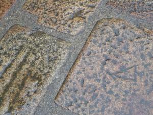 テラスの床の彫物