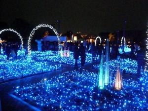 なばなの里2012-2013 光の雲海1