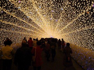 なばなの里2012-2013 光の回廊1