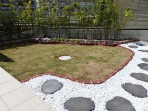 芝生を植えて3週間-1
