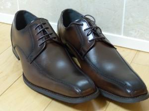 革靴(茶)