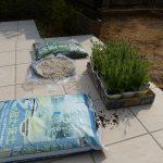 2014年の庭いじりを開始