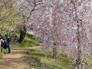 東山植物園3