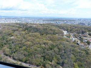 東山スカイタワー6