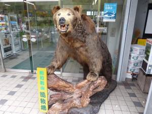 昭和新山熊牧場1